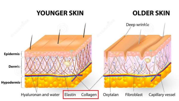 Younger-Older Skin